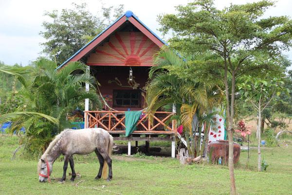 Unsere Unterkunft auf der Tierfarm, ein Pipi Langstrumpfhaus