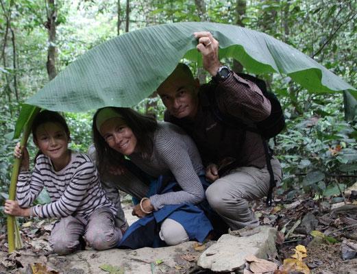 Bananenblatt als Unterschlupf, Cuc Phuong NP