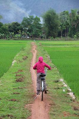 Unterwegs zwischen den Reisfeldern von Mai Chàu