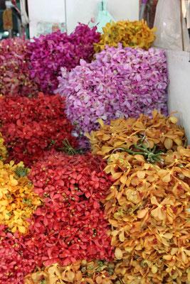 Orchideenpracht am Blumenmarkt, Bangkok