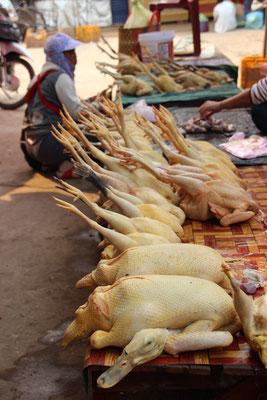 frische Gänse und Hühner