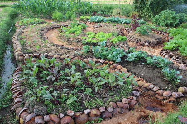 Schwungvolle Gartenbeet-Anlage