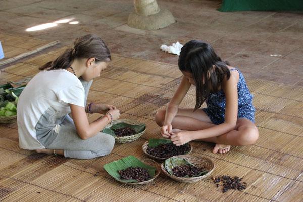 Kakaobohnen schälen, Bali