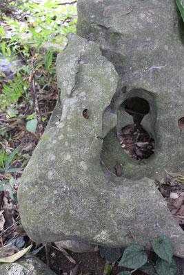 Freundlicher Stein, Cuc Phuong NP