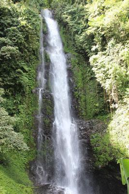Wasserfall in Munduk