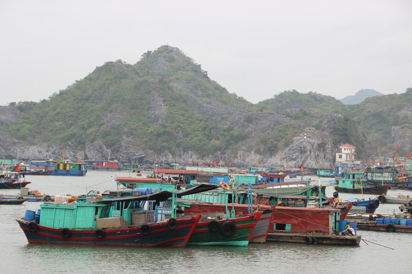 Hausboote in der Bucht vor Cat Ba City