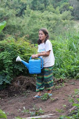 Gartenarbeit auf einer Farm, Thailand