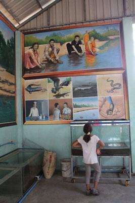 Infotafel im Schutzzentrum, Kambodscha