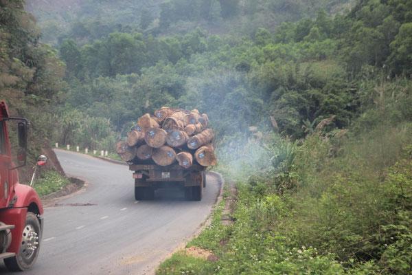 Holztransporter kurz nach dem Grenzübergang Laos/Vietnam