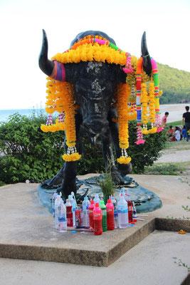 Der Stier von Thung Wua Laen Beach