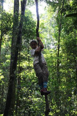 Sport: Lianenklettern, Kambodscha