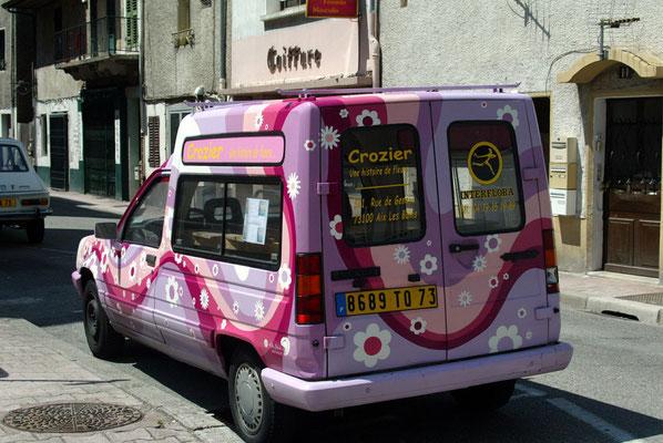 Acrylique sur voiture // Crozier Fleurs // 2005