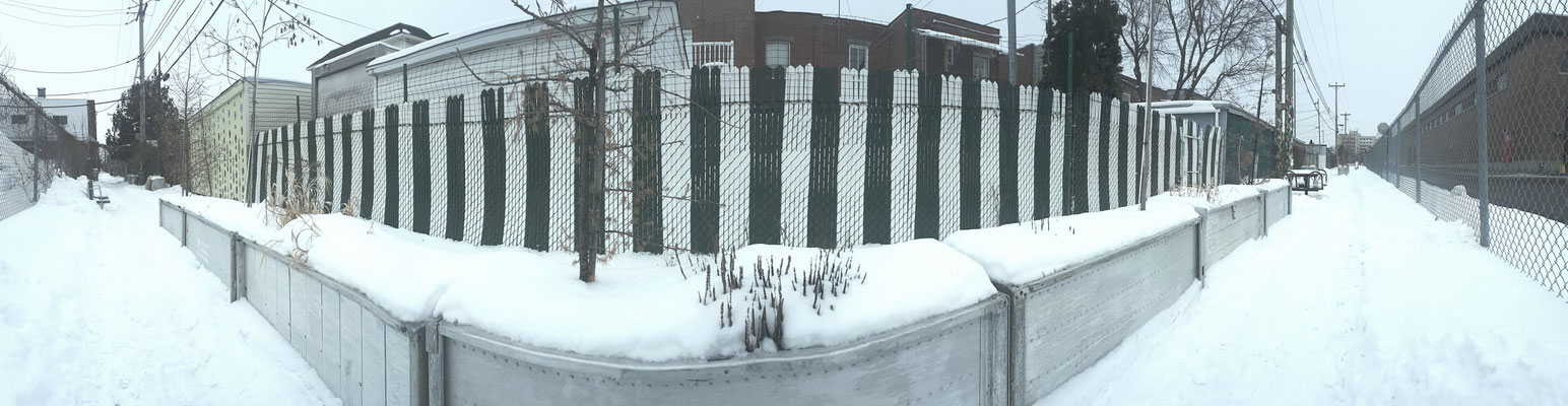 Grands bac à fleurs de la ruelle verte LE RACCOURCI  en hiver