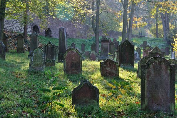 Jüdischer Friedhof 500 Jahre alt
