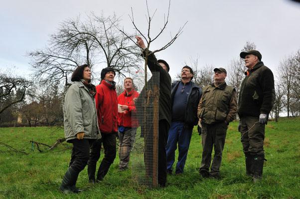 2. Schnittlehrgang am Ramsberg für die Baumpaten