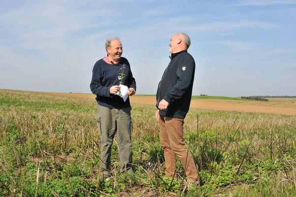 Paul Wegner und Friedrich Bellgardt freuen sich über den guten Ertrag auf der Fläche mit alternativen Energiepflanzen in Hammersbach