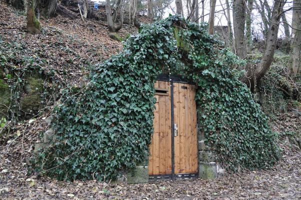 Winterquartier für Fledermäuse im Brunnental Grünberg