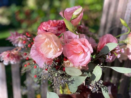 Hortensien, Dahlien, Astern und mehr