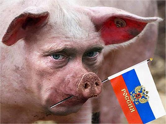 Этот свин, в соседских огородах все грядки порыл. В своём огороде, капусты уже нет!