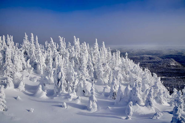 Neige sur mont Valin - Fabrice Simon