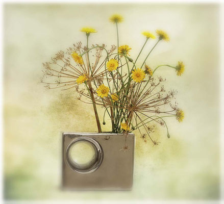 Vase argenté - Roseline Dupeux