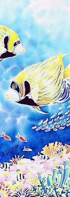 Emperor angelfish SOLD
