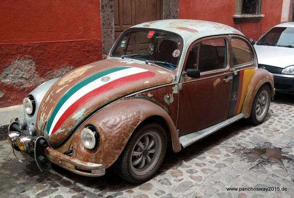 Mexiko_Hochland_San Miguel de Allende_Musterexemplar