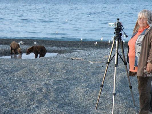 Снимаем медведей.