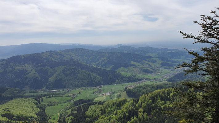 Schwarzwald im Süden von Deutschland
