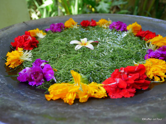 Bali Botanica Day Spa