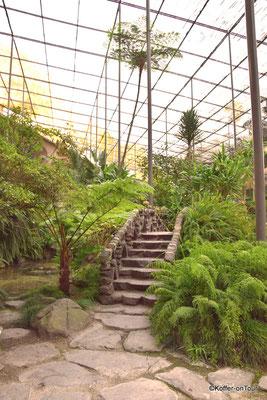 Botanischer Garten in Lissabon
