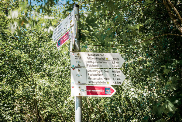 Geißenpfad im Schwarzwald