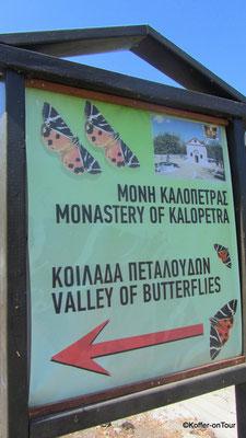 Petaloudes Tal der Schmetterlinge