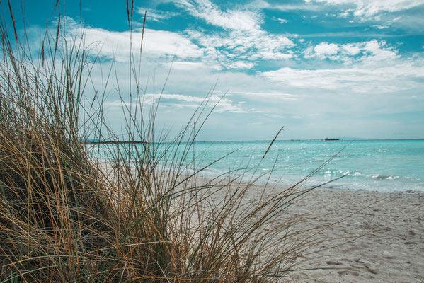 Karibik in der Toskana, Vada,