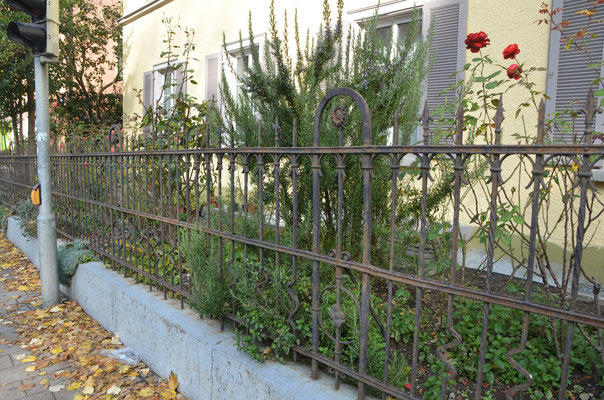 Foto: Dr. Dietmar Hawran, historischer geschmiedeter Gartenzaun mit Vorgarten