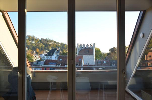 Blick vom Balkon Richtung Süden - Bild Dr. Dietmar Hawran