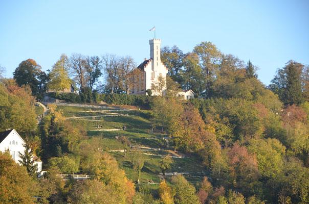 Blick vom Balkon Richtung Veitsburg - Bild Dr. Dietmar Hawran