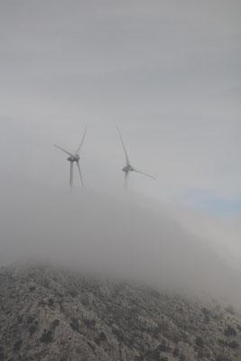 Nebelräder