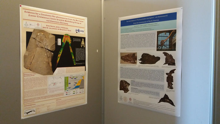5th mosasaur meeting poster session