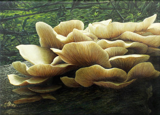 """Lungenseitling, pleurotus pulmonarius"" Acrylics on Canvas, 13x18cm, 2015"