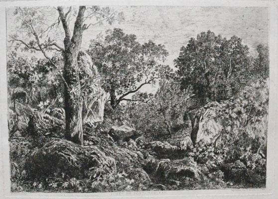 Saint-Etienne, Forêt de Fontainebleau, 213 x 297, éd. Cadart.