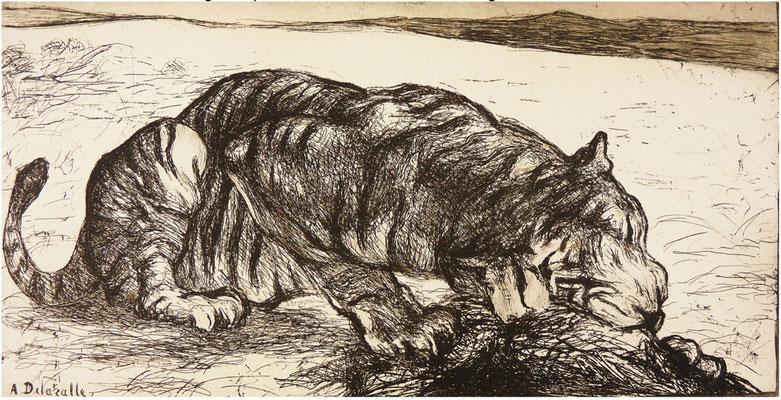 Tigre dévorant sa proie, Société des amis de l'eau-forte, 1908.