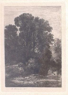 n°31 Les deux arbres