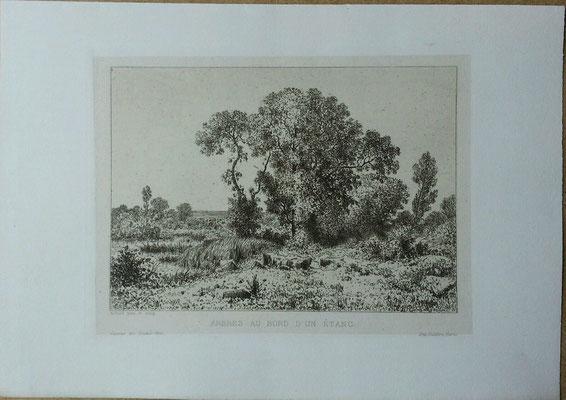 Achard, Arbres au bord d'un étang, Gazette des beau-Arts