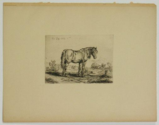 Guy, Le cheval, 1853