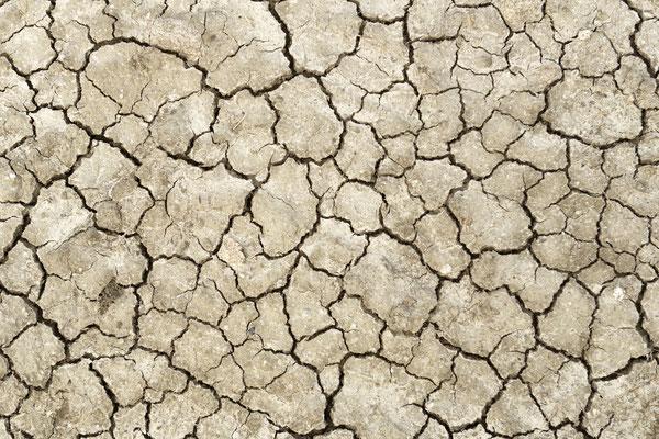 Guérande, ausgetrocknetes Salzbecken