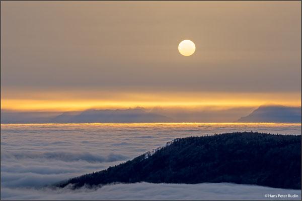 Vogelberg SO – Nebelmeer in der Morgensonne