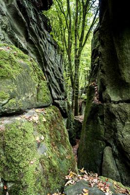 Labyrinth b. Echternach