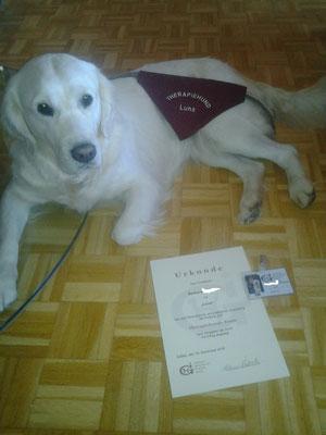 Luna, Hundeführerscheinprüfung bei uns, dann die Prüfung zum Therapiehund erfolgreich bestanden!