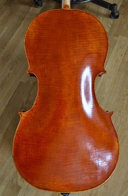 Einteiliger Celloboden aus Pappel - Violworks